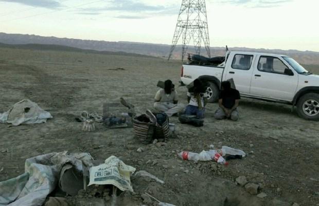 باند صید و قاچاق پرندگان شکاری در درگز متلاشی شد
