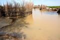 سیلاب 8 روستای هیرمند را فرا گرفت