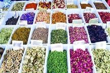 سهم صادرات گیاهان دارویی ایران کمتر از 3 دهم درصد کل تجارت جهانی است