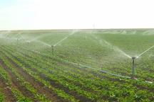 کشاورزی قزوین دارای 332 طرح آبیاری نوین است