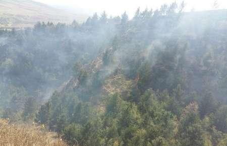 آتش به 11 هکتار ازعرصه های منابع طبیعی گلستان خسارت وارد کرد