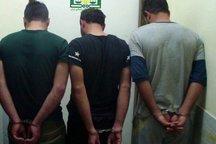 33 باند سرقت در بوشهر متلاشی شد