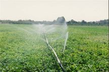 آبیاری نوین در ۱۵ هزار هکتار از زمینهای کهگیلویه و بویراحمد اجرا شد