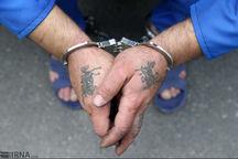 چهار سارق در دام پلیس آگاهی زنجان گرفتار شدند