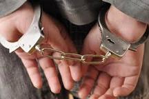 عامل ناامنی در شهرستان عنبرآباد دستگیر شد