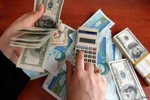 قیمت دلار به زودی تا 200 تومان کاهش مییابد/ بینظمی عرضه ارز پتروشیمیها قیمت را بالا برد