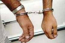 دستگیری سارقان تجهیزات داخل خودرو با 18 فقره سرقت درکرج
