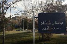 دادستان مشهد خواستار توقف عملیات قلع و قمع درختان شمشماد شد