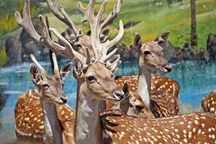60 میکروچیپ بر روی حیوانات باغ وحش مشهد نصب شد