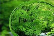 ریختن زباله در طبیعت، نابودی محیط زیست را در پی دارد