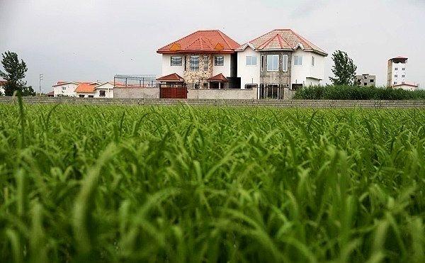توقف عملیات ۳۰ فقره تغییر کاربری غیرمجاز شناسایی شده در اراضی کشاورزی زنجان