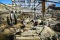 با کشف ۲ تابوت متعلق به دوره اشکانیان، تاریخ ۳ هزار ساله همدان برای نخستین بار به اثبات رسید