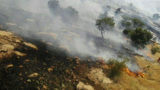 گرما و آتش غفلت در کمین مراتع آباده