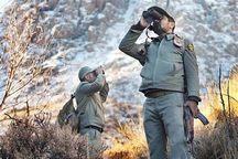 جنگلبانان ، فداکارانی که نیاز به توجه دارند