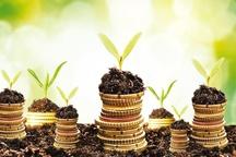 45 میلیارد تومان تسهیلات کشاورزی در خراسان جنوبی پرداخت شد