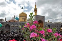 عید فطر در آستان قدس رضوی