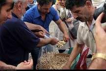 برگزاری جشنواره بادام زمینی در آستانه اشرفیه