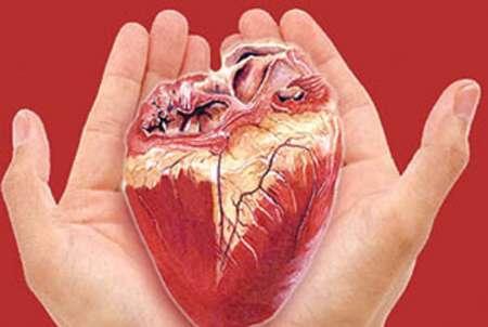 45 ارگان بیماران مرگ مغزی در زنجان به نیازمندان زندگی بخشید