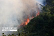 """آتشسوزی در جنگلهای """"بولی""""  اعزام نیروهای امدادی و مردمی به منطقه  نیاز مبرم به تجهیزات به روز اطفاء حریق"""