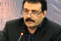 خوزستان تأمین کننده کلزای هیبریدی کشور