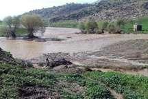 1300 هکتار از اراضی کشاورزی و باغات دچار خسارت شد