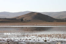 آغاز انتقال آب به کانال آبرسانی تالاب بین المللی «قوریگول»