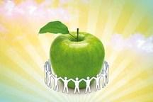 سلامت اجتماعی در دولت  تدبیر و امید مورد توجه قرار گرفت