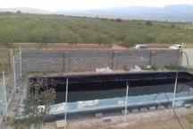 20 درصد اراضی کشاورزی دامغان به آبیاری نوین مجهز است