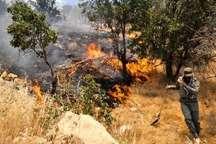 وقوع آتش سوزی در جنگل ها و مراتع  معمولان پلدختر