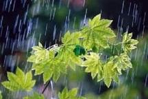 بارش رگباری باران در نقاط  مختلف خراسان رضوی