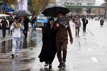 جاماندگان کربلا در کرمان راهپیمایی کردند