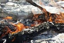 نابودی 24 هکتار از اراضی تحت حفاظت محیطزیست کهگیلویه و بویراحمد  گردشگران عامل اصلی آتش سوزیها