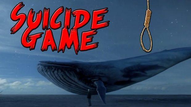 رئیس ستاد مبارزه با بازی های رایانه ای غیرمجاز: نهنگ آبی از دسترس خارج شده است