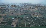 مزارع شناور ماهی در دریا + تصاویر