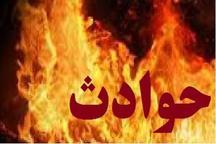 یک باب منزل مسکونی در باقرشهر طعمه حریق شد
