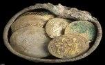 سکه های طلای عباسی در قیصریه کشف شد+تصاویر