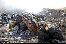 وضعیت بهداشتی و زیست محیطی زبالهگاه مراغه نامناسب است