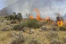 پنج هکتار از اراضی ملی آبیک در آتش سوخت