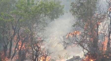 آتش سوزی در ارتفاعات بزداغی مانه و سملقان مهار شد