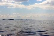 تراز دریاچه ارومیه به 1271.49 متر رسید