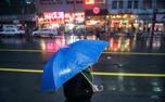 باد و باران سیستان و بلوچستان را فرا می گیرد