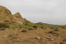 17.5 درصد از مساحت اردبیل جزو مناطق شکار ممنوع محسوب میشود