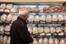 قیمت مرغ طی چند روز آینده کاهش مییابد