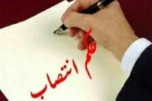 سرپرست دفتر امور سیاسی، انتخابات و تقسیمات کشوری استانداری البرز منصوب شد