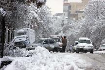 جلوه زیبایی زمستان با بارش برف در بردسیر و لاله زار