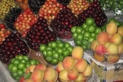ثبات قیمت در بازار میوه اهواز