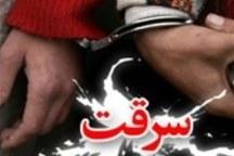 سارقان منزل در بروجرد دستگیر شدند