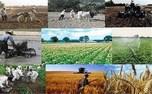 رونمایی از 100 اپلیکیشن کشاورزی