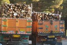 محموله 18 تنی چوب قاچاق در بجنورد کشف شد