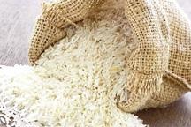برنج مازندران امسال در قالب برند وارد بازار می شود